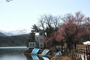 20190406桜ヶ池